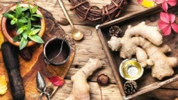 herbolaria para la diabetes